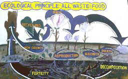 ecological principle - all waste = food
